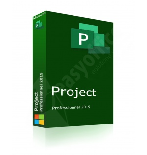 microsoft_project2019